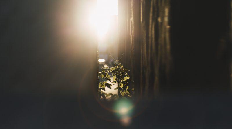 陽射しが入る部屋